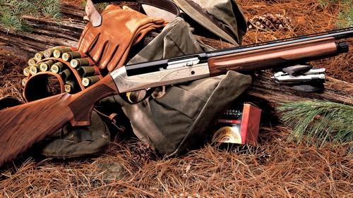 разрешение на охоту