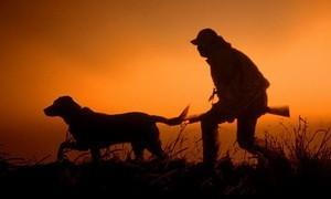 календарь охотника