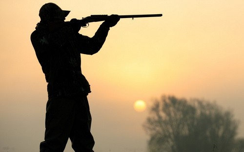 Изменилась стоимость сдачи специального охотничьего экзамена
