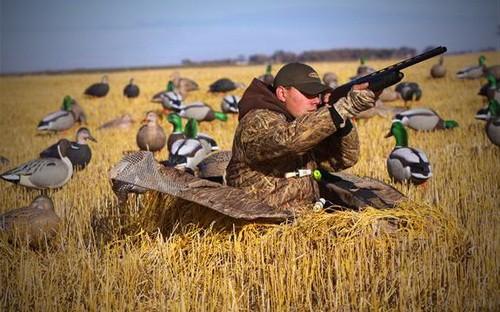 Охота на гуся - захватывающая и желанная (ВИДЕО)