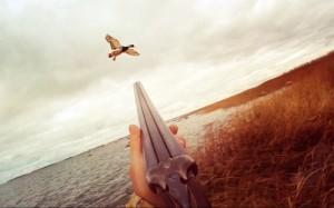 Как стрелять в утку: 5 основных советов